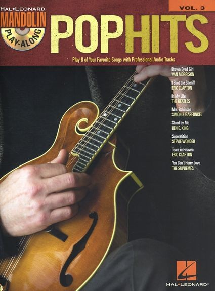 HAL LEONARD - HL00702519 Pop Hits