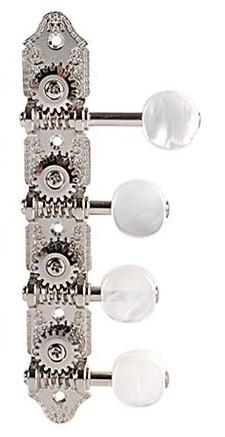 GR309FVN Mandolin Nickel