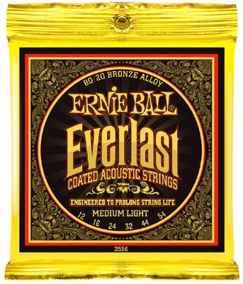 EB2556 Everlast Coated 12-54