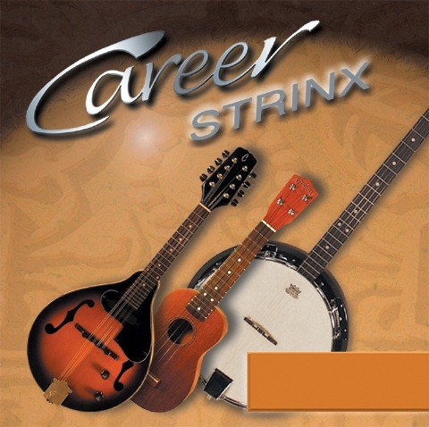 Career - CVIOLIN Strinx Violine