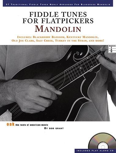 OK65153 Fiddle Tunes Flatpick