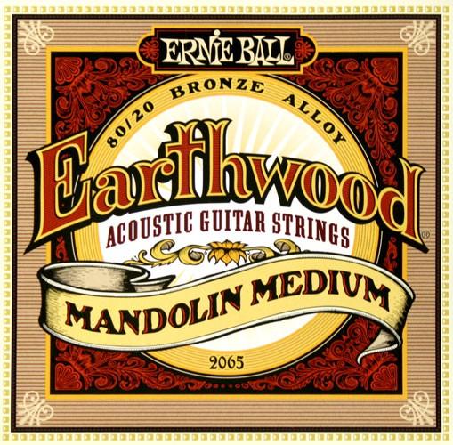 Ernie Ball - EB2065 Earthwood Bronze