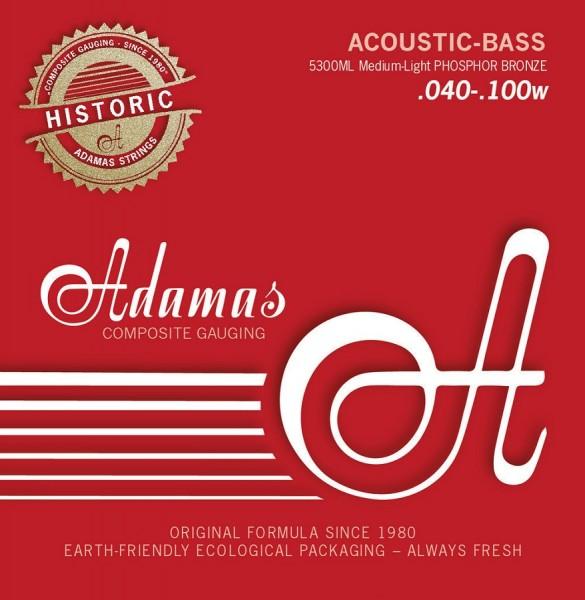 5300ML 4S Acoustic Med Light