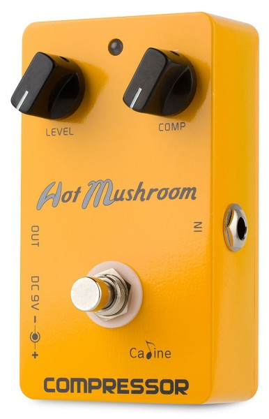 CP-10 Hot Mushrom Compressor